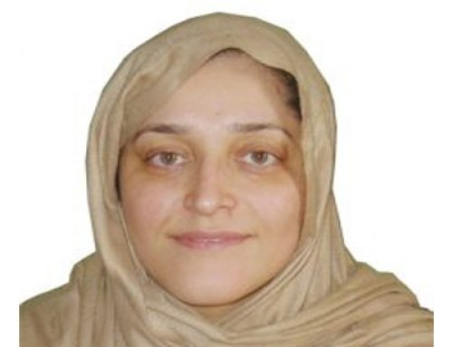 NECDO Founder & Chairperson Jamila Afghani's Bio in Brief