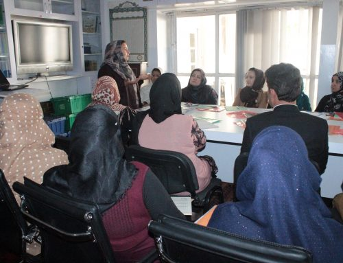 Mobilizing Afghan Man to Protect Woman Rights, Democracy and Peace Workshop 2017